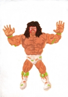 http://jsbaumann.ch/files/gimgs/th-11_11_3ultimatewarrior.jpg